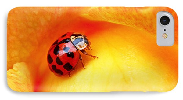 Ladybug IPhone Case by Rona Black