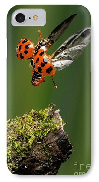 Ladybug Taking Off Phone Case by Scott Linstead