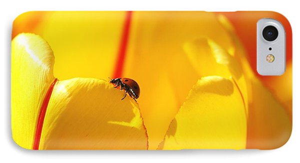 IPhone Case featuring the photograph Ladybug - The Journey by Susan  Dimitrakopoulos