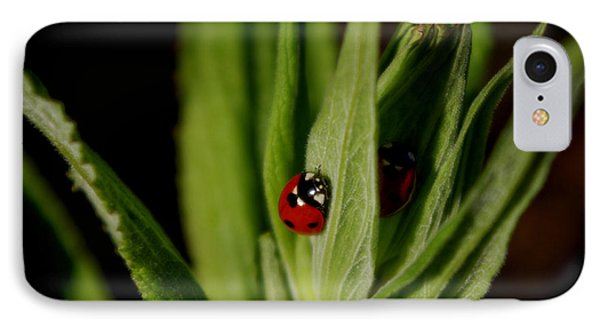 IPhone Case featuring the photograph Ladybugs by Adria Trail