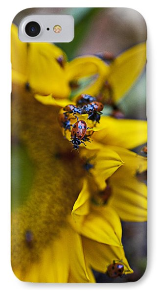 Ladybugs Close Up Phone Case by Garry Gay