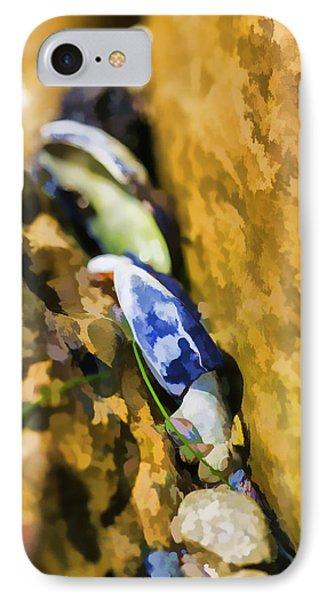 Laguna Beach Tide Pool Pattern 6 Phone Case by Scott Campbell