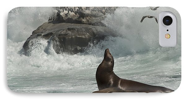 IPhone Case featuring the photograph Lajolla Surf N Nature Preserve by Daniel Hebard