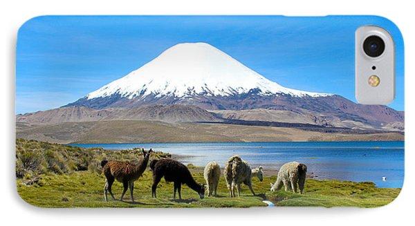 Lake Chungara Chilean Andes Phone Case by Kurt Van Wagner