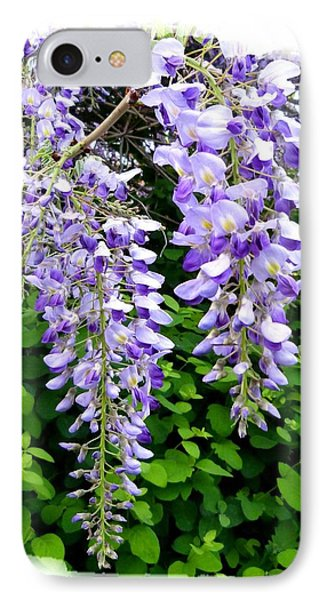 Lake Country Wisteria IPhone Case by Will Borden