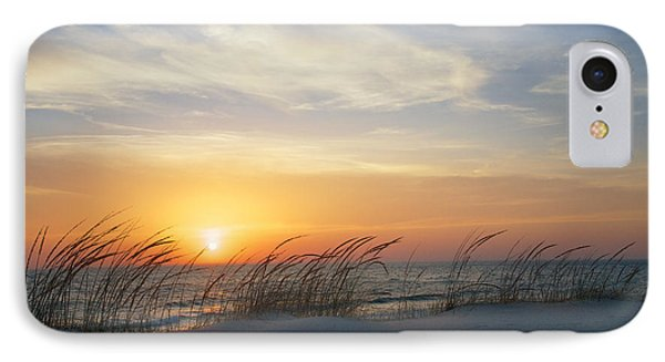 Lake Michigan Sunset With Dune Grass IPhone Case by Mary Lee Dereske