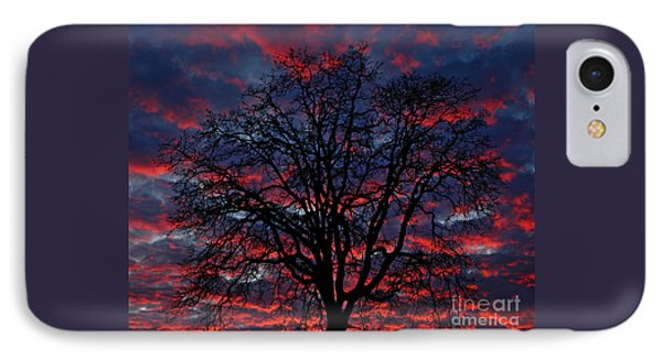 Lake Oswego Sunset Phone Case by Nick  Boren