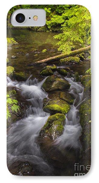 Lake Quinault Creek 2 IPhone Case by Sonya Lang