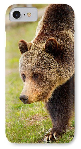 IPhone Case featuring the photograph Lake Grizzly by Aaron Whittemore