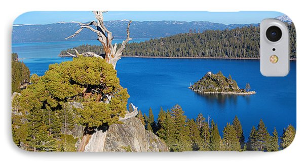 Lake Tahoe Reaching Tree IPhone Case
