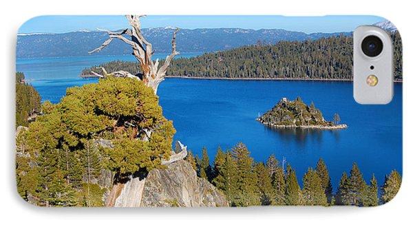 Lake Tahoe Reaching Tree IPhone Case by Debra Thompson