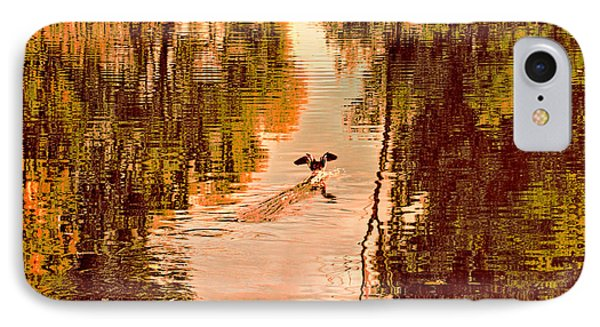 Landing Duck Absrtact IPhone Case