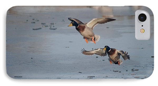 Landing Mallards IPhone Case