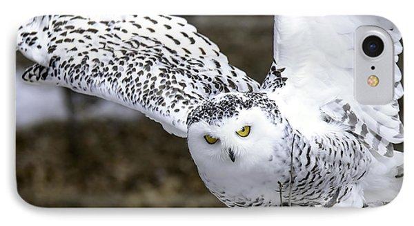 Landing Of The Snowy Owl Where Are You Harry Potter Phone Case by LeeAnn McLaneGoetz McLaneGoetzStudioLLCcom
