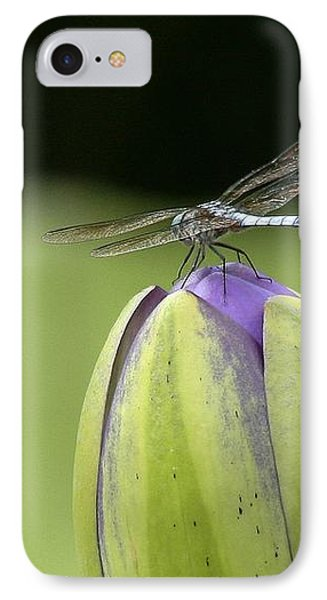 Landing Pad IPhone Case by Yvonne Wright