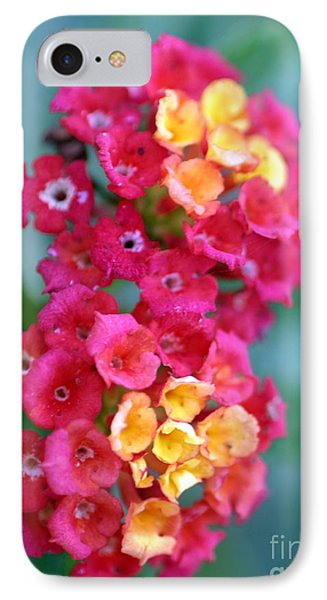 IPhone Case featuring the photograph Lantana by Henrik Lehnerer