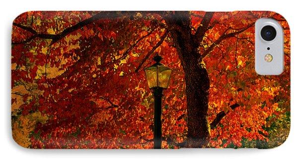 Lantern In Autumn Phone Case by Susanne Van Hulst