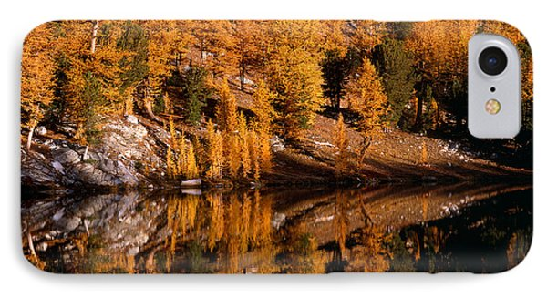 Larch Trees Reflected On Cooney Lake IPhone Case