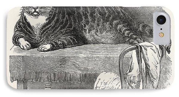 Large Cat, 1850. This Noble Specimen Of The Cat IPhone Case