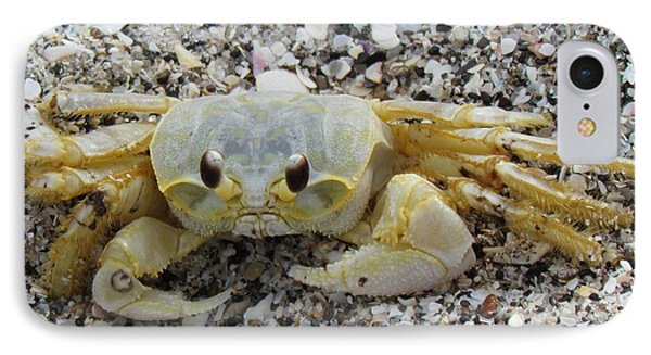IPhone Case featuring the photograph Ghost Crab by Cynthia Guinn