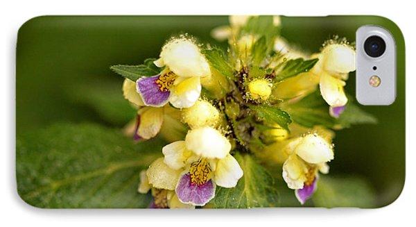 IPhone Case featuring the photograph Large Flowered Hemp-nettle by Liz  Alderdice