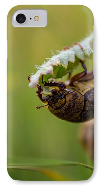 Large Lunch IPhone Case by Rhys Arithson