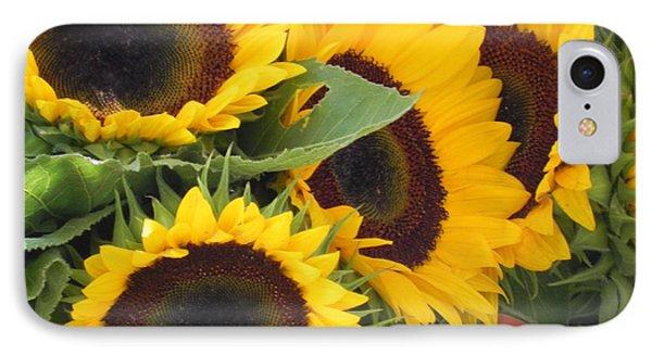 Large Sunflowers IPhone Case by Chrisann Ellis