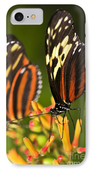 Large Tiger Butterflies Phone Case by Elena Elisseeva