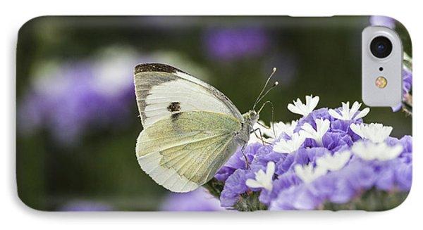 Large White Pieris Brassicae  IPhone Case by Eyal Bartov
