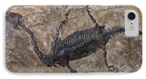 Lariosaurus Balsami IPhone Case by Dirk Wiersma