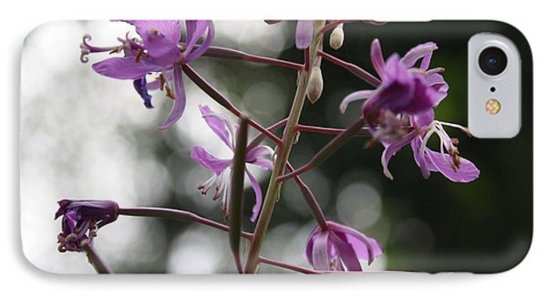 IPhone Case featuring the photograph Last Mountain Flowers by Amanda Holmes Tzafrir