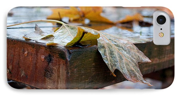 IPhone Case featuring the photograph Last Of The Leaves by Gwyn Newcombe