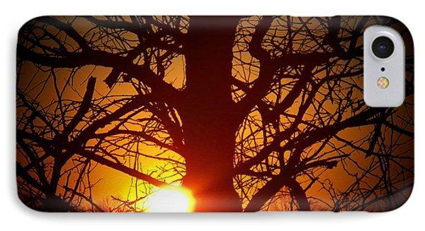 Last Sunset Of 2013 IPhone Case by Joyce Kimble Smith