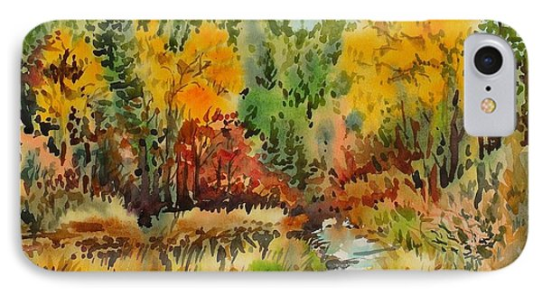 Latah Creek Fall Colors IPhone Case