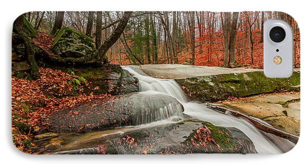 Late Fall On The Forest Floor IPhone Case by Jeremy Farnsworth