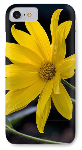 Late Summer Beauty Phone Case by Michael Friedman