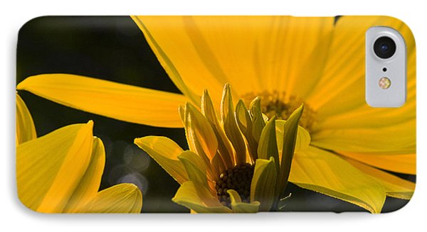 IPhone Case featuring the photograph Late Summer Blooms by Michael Friedman