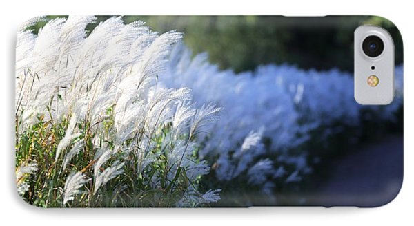 IPhone Case featuring the photograph Late Summer Path by Kate Purdy