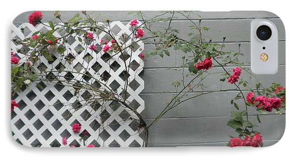 Lattice Smell The Roses IPhone Case by Suzanne McKay