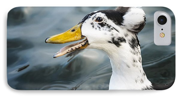 Laughing  Duck Phone Case by Caitlyn  Grasso
