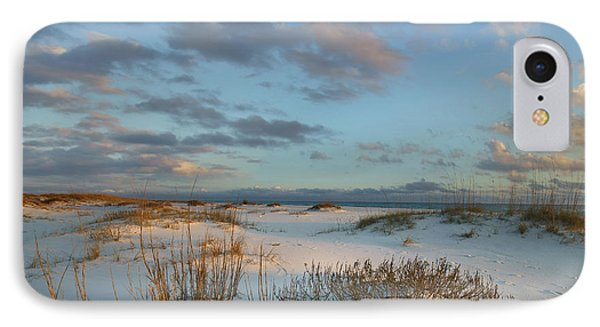 Laughing Gulls Flying Over Dunes Gulf IPhone Case by Tim Fitzharris