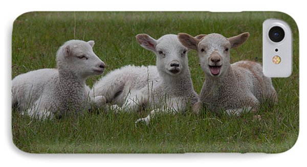 Laughing Lamb Phone Case by Richard Baker