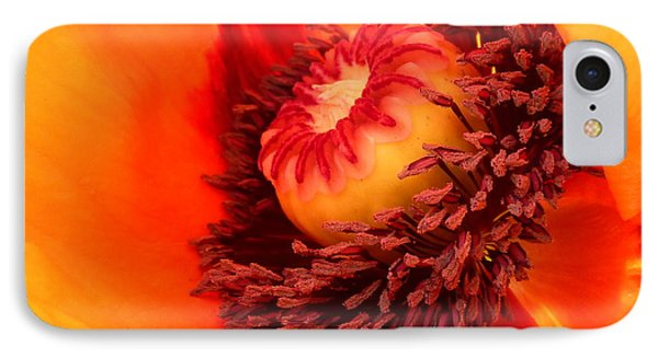 Lava Flow Phone Case by Connie Handscomb