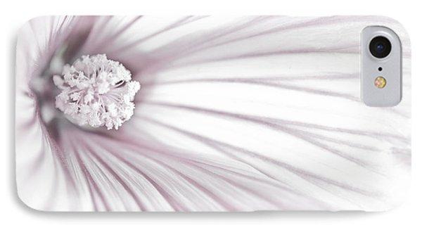 Lavatera Flower Stamen Macro  IPhone Case by Sandra Foster