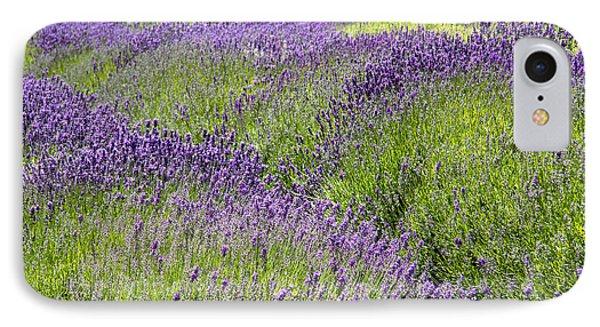 Lavender Day Phone Case by Kathy Bassett