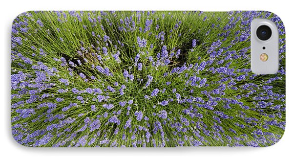 Lavender Explosion Phone Case by Tim Gainey