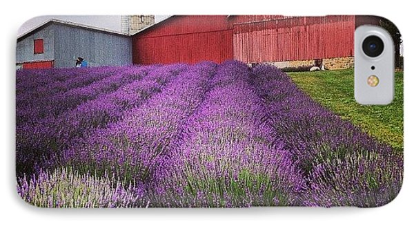 Lavender Farm Landscape IPhone Case