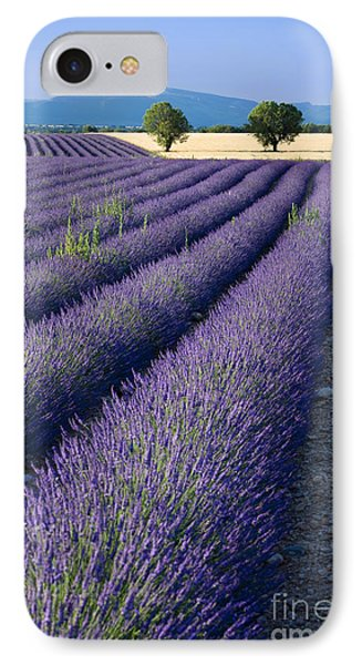 Lavender Fields Phone Case by Brian Jannsen