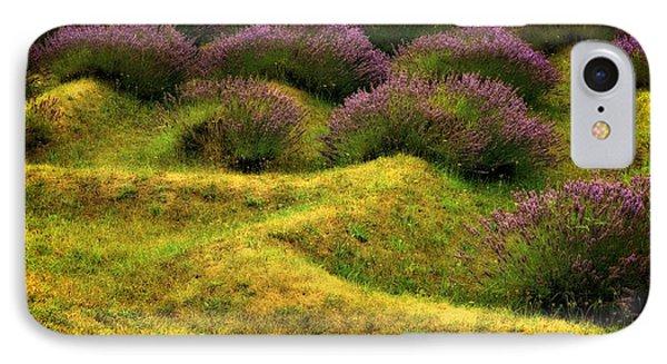 Lavender Fields IPhone Case by Michelle Calkins