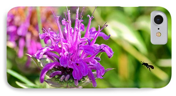 IPhone Case featuring the photograph Lavender Pink Bee Balm Wild Bergamot by Karon Melillo DeVega